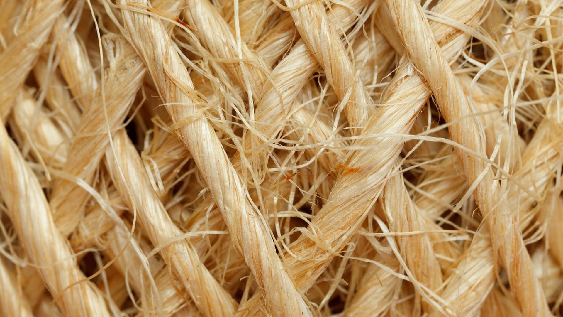 Pourquoi utiliser la fibre de bois pour l'isolation ?